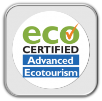 Our Eco logo