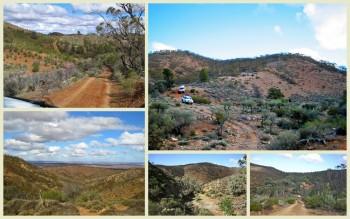 Bendleby Ranges adventure tours