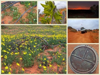 Tag Along Tours Diamantina & Channel Country