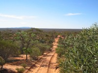 The Googs Track looking north towards Mount Finke.