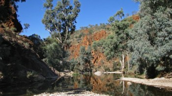 Northern Flinders Ranges 4wd tours