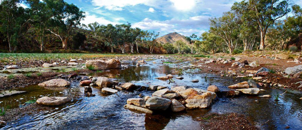 Parachilna Creek Facebook Size