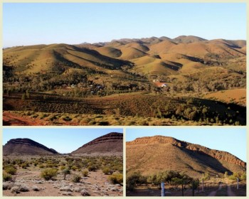 Willow Springs Web Flinders Ranges Tag along Tour